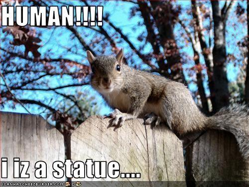HUMAN!!!!  i iz a statue....