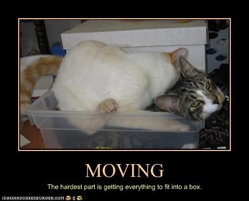 box,moving
