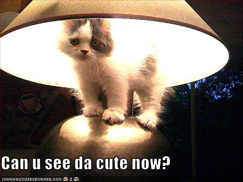 cute lamp - 2821829376