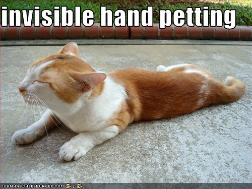 invisible petting - 2823009280