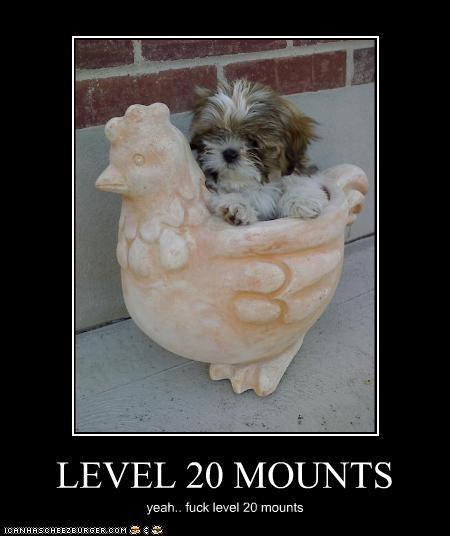 LEVEL 20 MOUNTS yeah.. fuck level 20 mounts