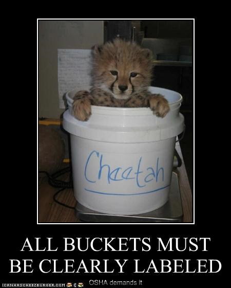 ALL BUCKETS MUST BE CLEARLY LABELED OSHA demands it