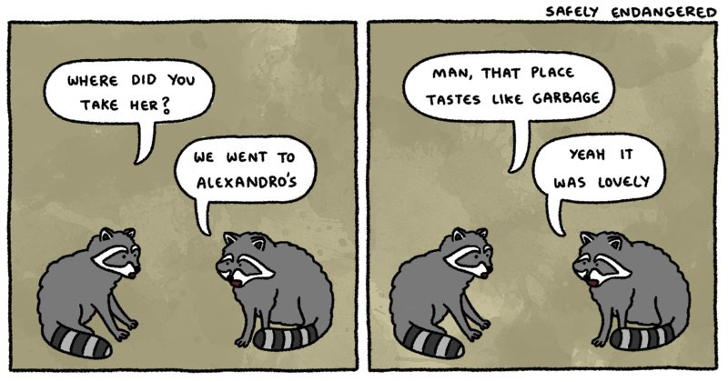 Collection of random funny web comics about life, friendship, dating, parenting, raccoons, cats, animals.