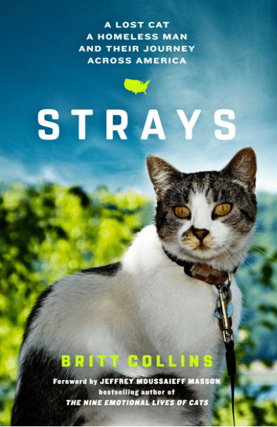 new book about the friendship between stray cat and an homeless
