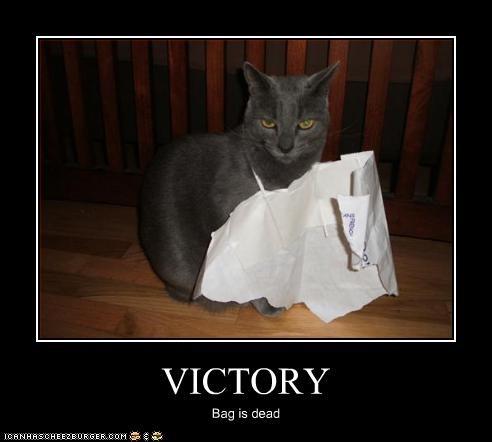 bag murder win - 2835365376