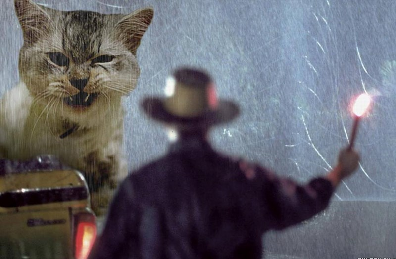 Jurassic park scenes with dinosaurs replaced with large cats.