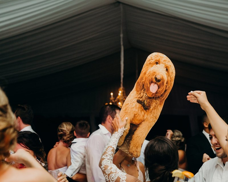 dad of bride makes dog's cutout to attend her wedding