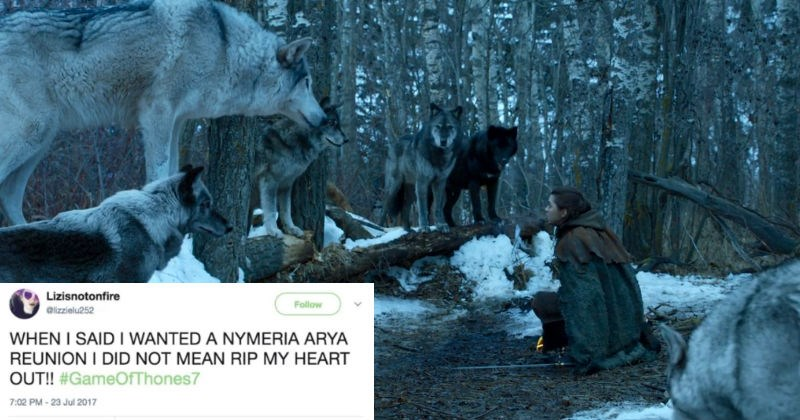 Collection of our favorite funny Twitter reactions from last night's Game of Thrones episode.