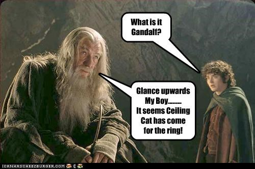 What is it Gandalf? Glance upwards My Boy......... It seems Ceiling Cat has come for the ring!