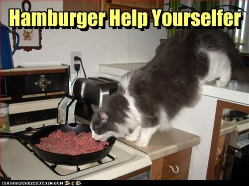 Hamburger Help Yourselfer
