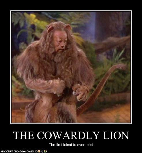 THE COWARDLY LION The first lolcat to ever exist