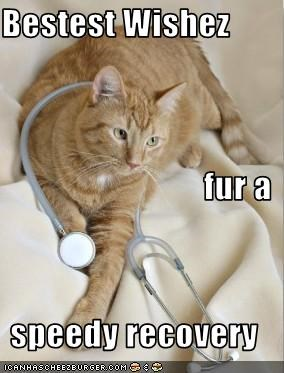 Bestest Wishez fur a speedy recovery - Cheezburger - Funny Memes | Funny  Pictures