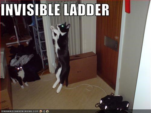 climbing invisible ladder - 2853803264