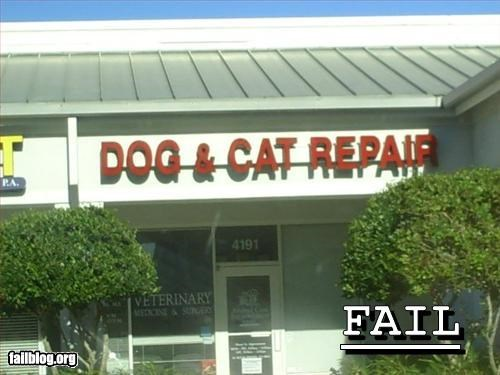 business,company name,g rated,repair,veterinarian