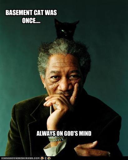 basement cat,evil,god,lolcats,Morgan Freeman