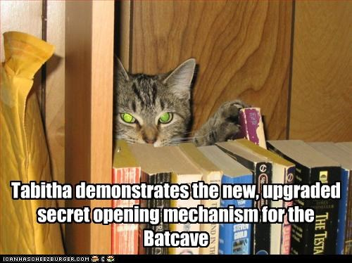 Tabitha demonstrates the new, upgraded secret opening mechanism for the Batcave