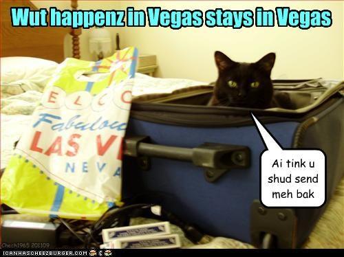 Wut happenz in Vegas stays in Vegas Ai tink u shud send meh bak Chech1965 201109
