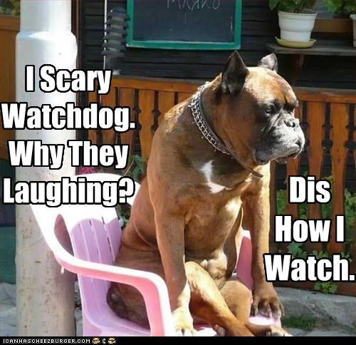 I Scary Watchdog. Why They Laughing? Dis How I Watch.