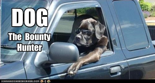 bounty hunter,driving,labrador,truck