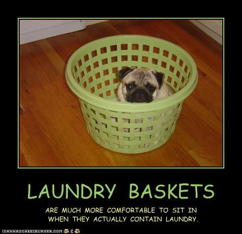 LAUNDRY BASKETS ARE MUCH MORE COMFORTABLE TO SIT IN WHEN THEY ACTUALLY CONTAIN LAUNDRY.