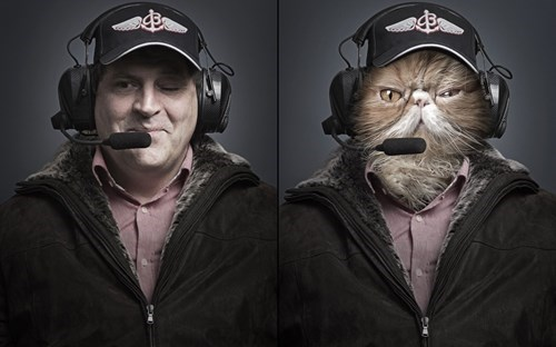 people photoshoped as their cats