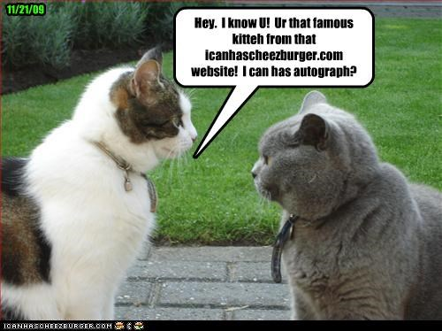 Hey.  I know U!  Ur that famous kitteh from that icanhascheezburger.com website!  I can has autograph?
