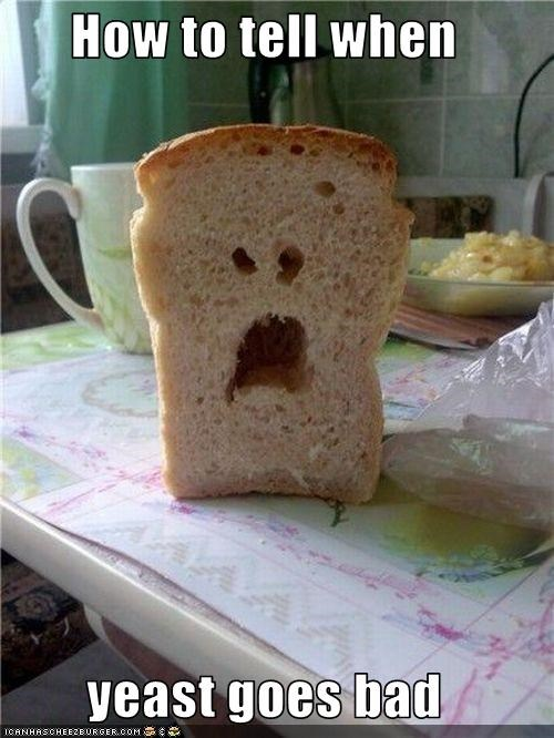 angry bread lolobjects - 2869139456
