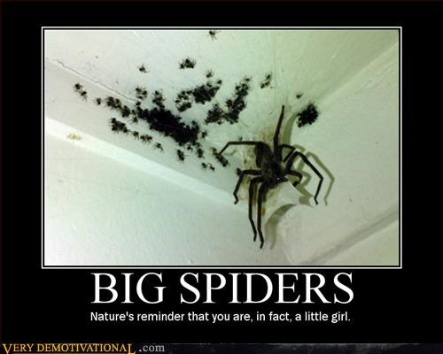 big little girl run scary spider Terrifying - 2870137856