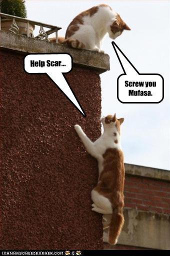 Help Scar... Screw you Mufasa.