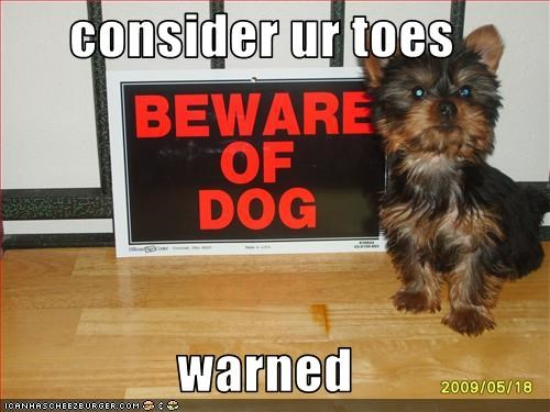 beware of dog toes warning yorkshire - 2870669568