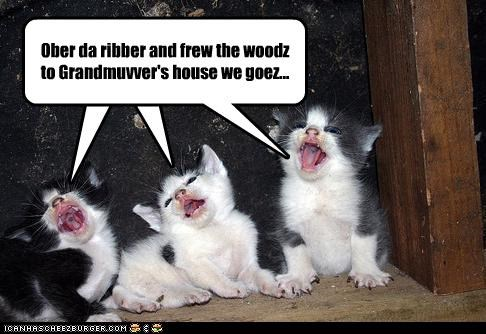 Cleverness Here Cleverness Here Ober da ribber and frew the woodz to Grandmuvver's house we goez...