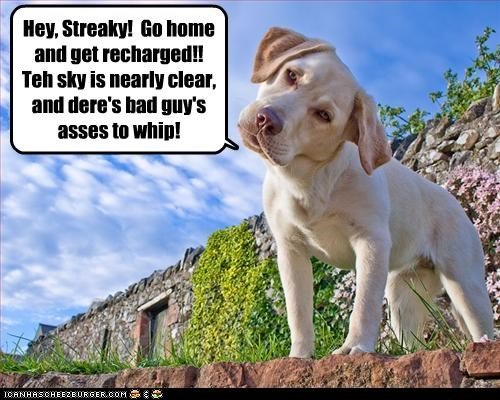 Hey, Streaky! Go home and get recharged!! Teh sky is nearly clear, and dere's bad guy's asses to whip!