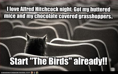 """I love Alfred Hitchcock night. Got my buttered mice and my chocolate covered grasshoppers.. Start """"The Birds"""" already!!"""