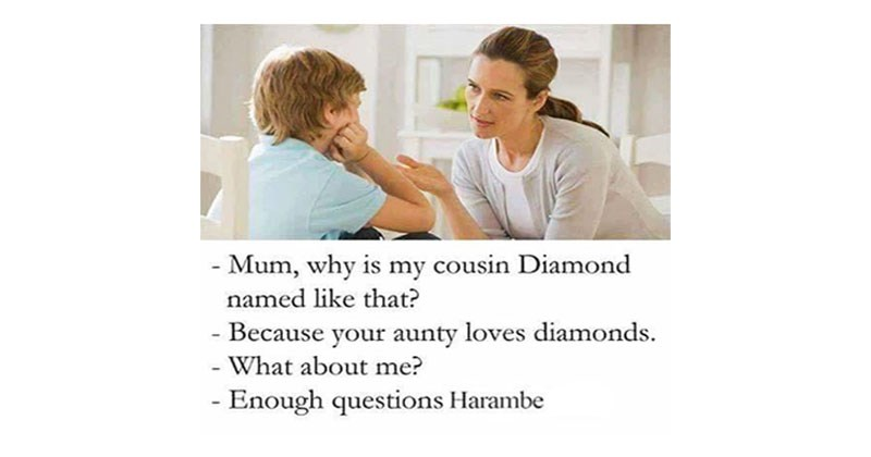 "Collection of memes about ""because your mother loves"" or ""because your mother loves roses"" or ""why is my sister named"" feature."
