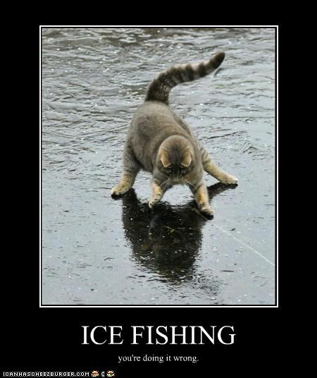 Ice Fishing Cheezburger Funny Memes Funny Pictures