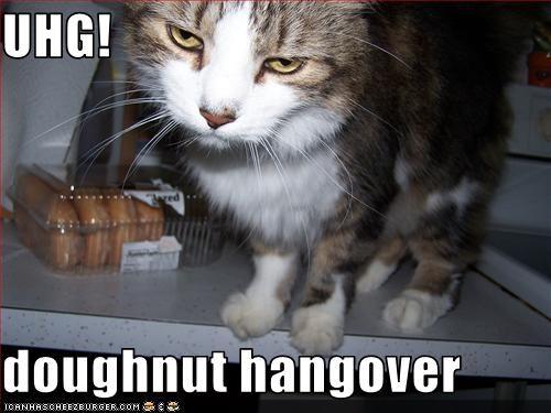 UHG! doughnut hangover - Cheezburger - Funny Memes | Funny