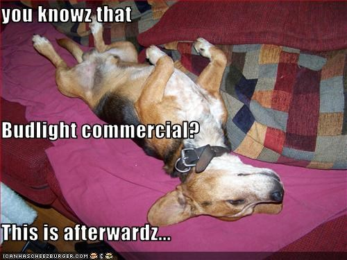 you knowz that  Budlight commercial? This is afterwardz...