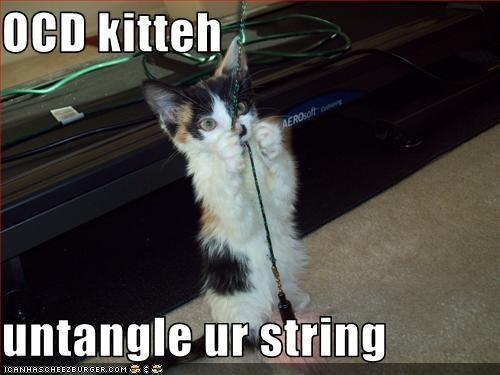 cute helping kitten ocd string - 2885971968