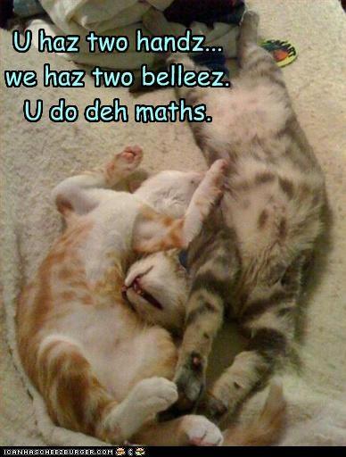 bellyrub cute want - 2887441920