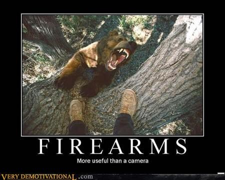 bears cameras firearms scary Terrifying tree