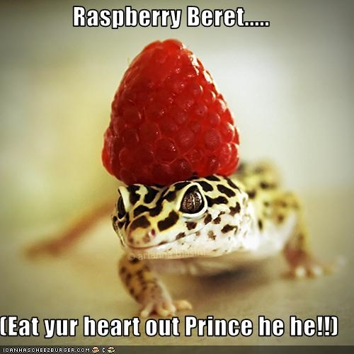 Raspberry Beret..... (Eat yur heart out Prince he he ... 41567d09e7e