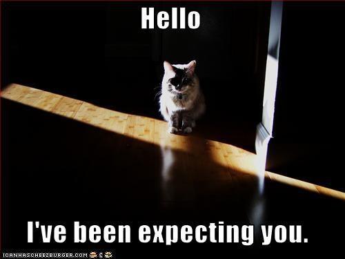 scary stalking waiting - 2892250368