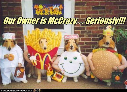 Cheezburger Image 2894807552