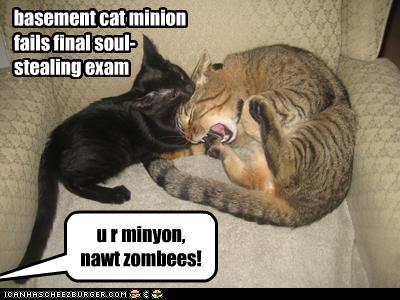 basement cat minion fails final soul- stealing exam u r minyon, nawt zombees!