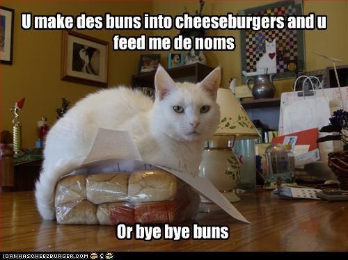 Cheezburger Image 2896286976