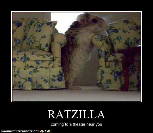 RATZILLA coming to a theater near you