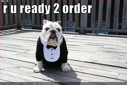 bulldog costume tuxedo waiter - 2899261184