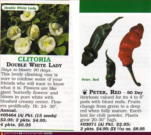 ads p33n peppers seeds wtf