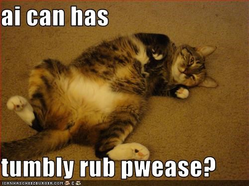 ai can has  tumbly rub pwease?