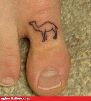 animals comedy tats - 2906534144